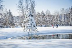 Traverse City: Snowshoeing in the Boardman Valley
